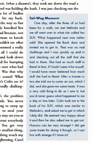 Book Extract 2b