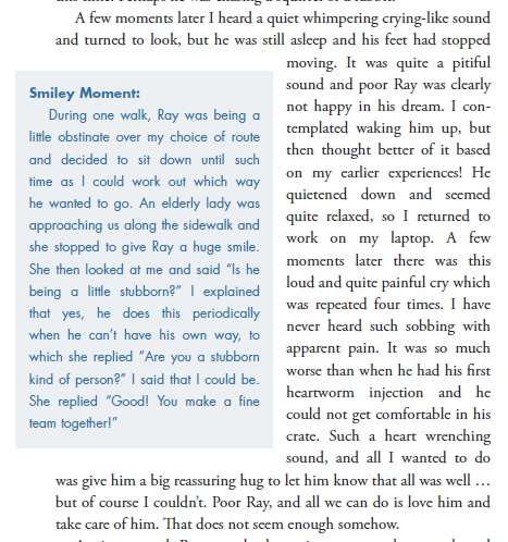 Book Extract 5